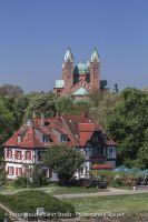 schiff_pfaelzerland_altrheinfahrt_speyer-108